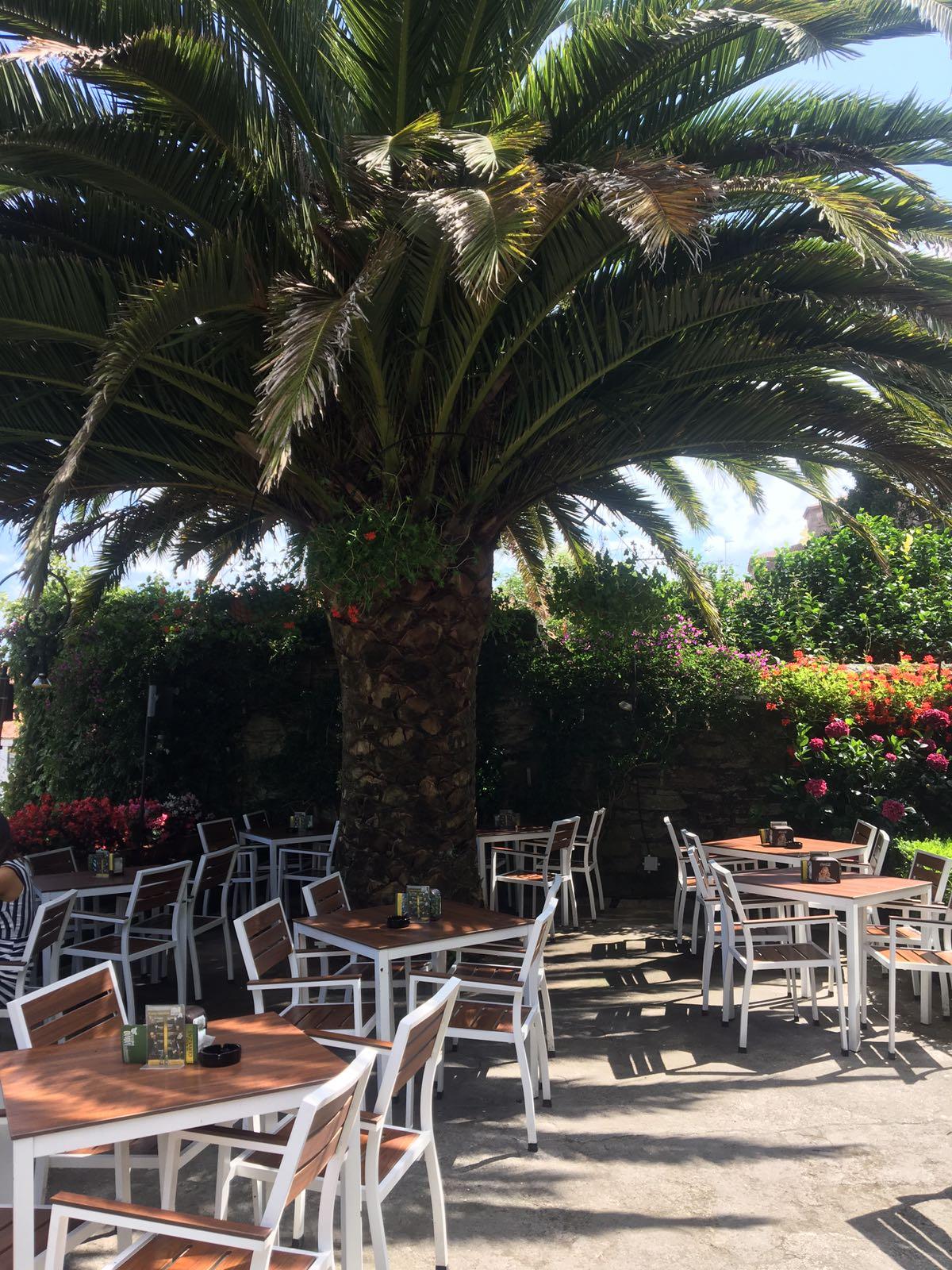 Jardín y terraza del Momo